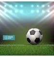 Soccer Ball in Stadium vector image vector image