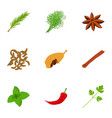 food herb icons set cartoon style vector image