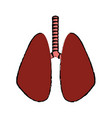 lung human organ healthycare icon vector image