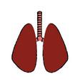 lung human organ healthycare icon vector image vector image