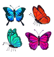 set colorful realistic butterflies vector image