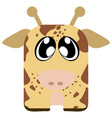 isolated cute animal vector image