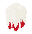 bloody tooth icon isometric style vector image vector image
