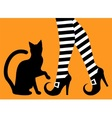 legs witch and black cat vector image vector image