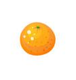 orange icon vector image vector image