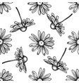seamless pattern with black and white chamomile vector image vector image