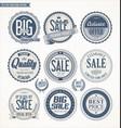 set of retro vintage blue labels and badges vector image vector image