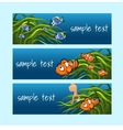 Clown fish among the algae on a blue background vector image vector image