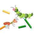 coloring book with caterpillar ant insects colored vector image