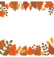 decorative border leaves berries fruit autumn vector image