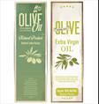 olive oil retro vintage background vector image