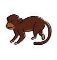 outline draw monkey vector image vector image