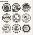 set of retro vintage labels and badges vector image vector image