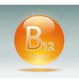 vitamin B12 vector image vector image
