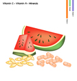 Watermelon with Vitamin C and Vitamin A vector image vector image