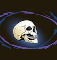 levitating human skull vector image