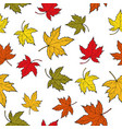 seamless pattern with colorful autumn maple leaves vector image