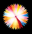 bright graphics abstract colorful glowing flower vector image vector image