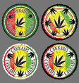 cannabis leaf silhouette design jamaican flag back vector image vector image