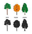 forest trees isolated on white background vector image vector image