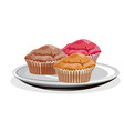 realistic cupcake vector image vector image