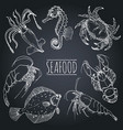 vintage seafood sketches collection hand vector image