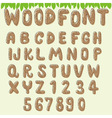 wood font light brown vector image