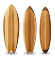 Wooden surfboards vector image