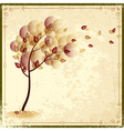 autumn tree vector image
