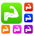 biceps set collection vector image vector image