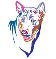 colorful decorative portrait thai ridgeback vector image