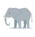 elephant cartoon large mammal forest elephant vector image vector image