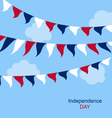 Flags USA Set Bunting Red White Blue vector image vector image