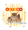 Hello autumn background with owl family vector image