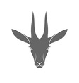 Isolated antelope on white background vector image