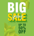 spring sale poster template with leaves and big vector image