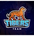 Tiger sport logo Mascot design template vector image