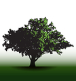 A large glorious old oak tree vector image vector image