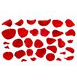 a set of crimson rose petals vector image
