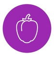 Bell pepper line icon vector image