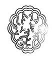 brain organ icon vector image vector image