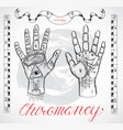 chiromancy chart with hands and lines vector image