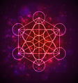 Metatrons Cube - Flower of Life Flower of Life vector image vector image