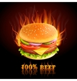 Beef Hamburger Background vector image