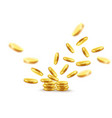 gold coins explosion vector image