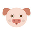 isolated pig face vector image