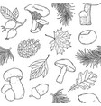 pattern with forest items vector image