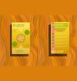 business brochure flyer design layout template in vector image vector image
