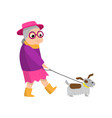 cute senior woman with pink hat walking with dog vector image vector image