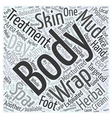 Day Spas Popular Body Treatments Word Cloud vector image vector image